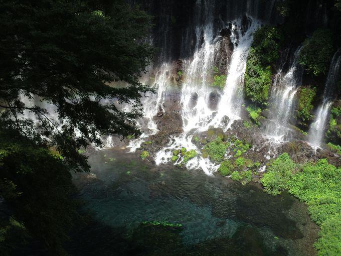 数多くある日本の滝の中で堂々の第1位「白糸の滝」