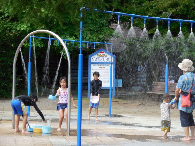 暑い日には水遊び広場も!