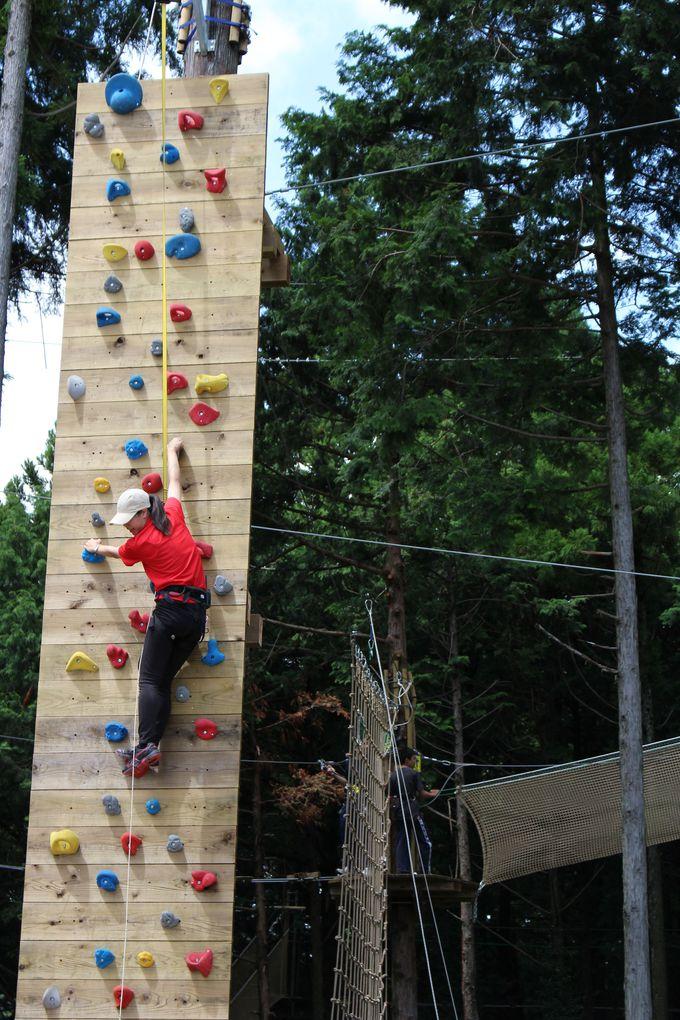 樹上のアスレチック・フォレストアドベンチャー!10メートルの壁・クリフチャレンジャーも!