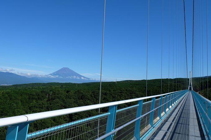 日本最長!歩行者専用大吊橋
