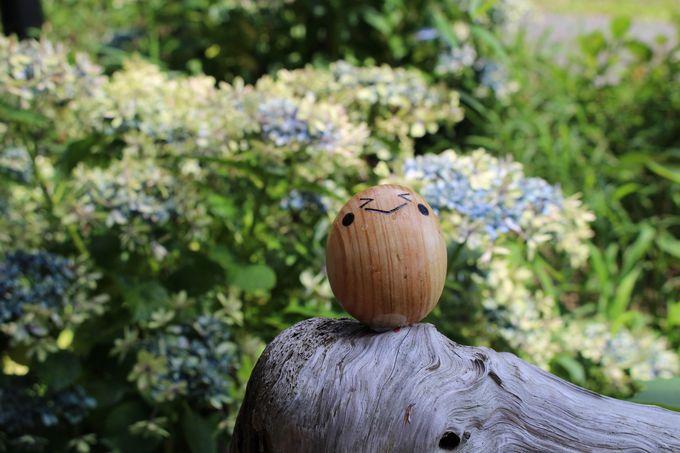 お花も楽しめる三島スカイウォーク