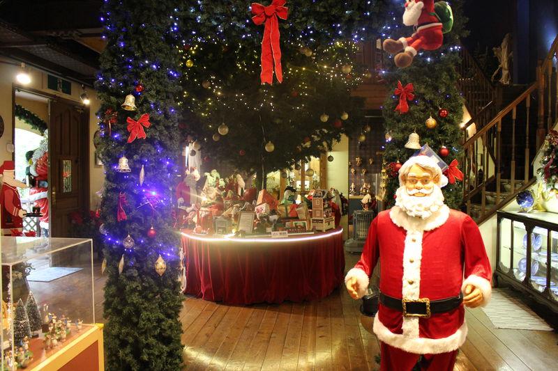 サンタさんは普段、何してる?山梨・山中湖「クリスマスの森」