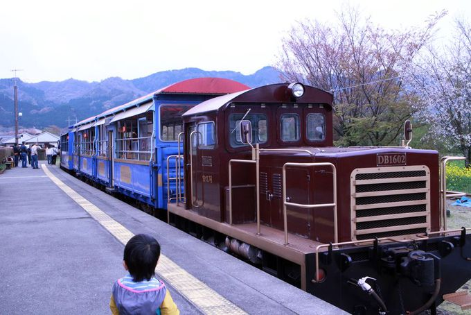 日本一小さな機関車、南阿蘇鉄道のトロッコ列車「ゆうすげ号」
