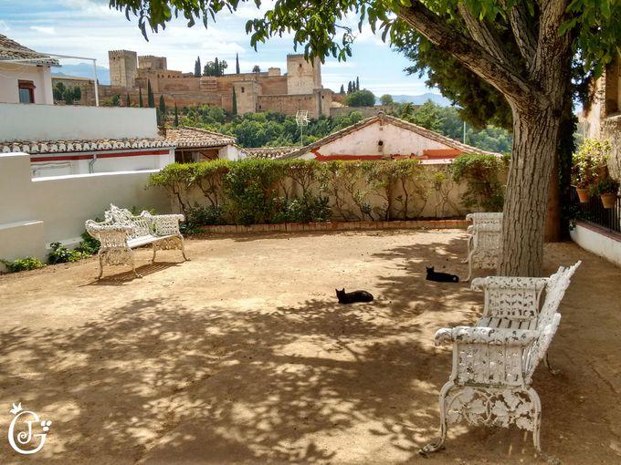 アルハンブラ宮殿の見える庭