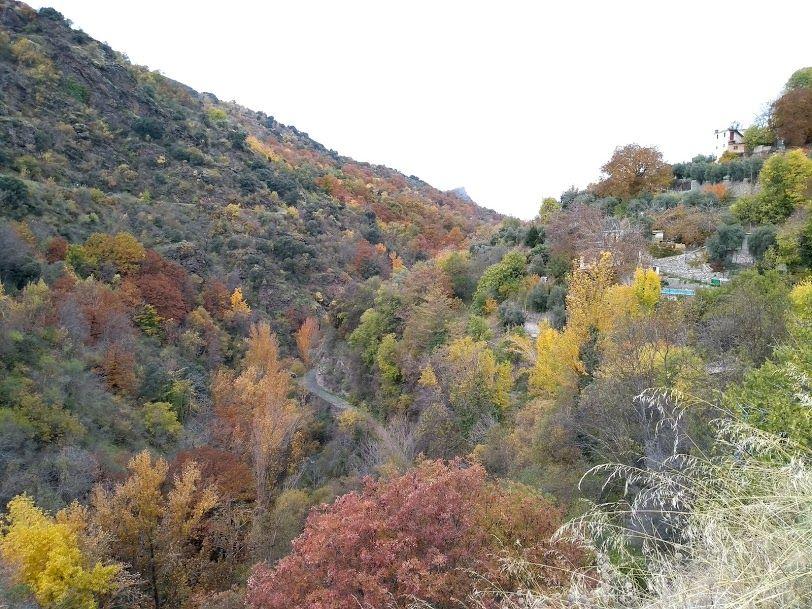 近郊の村に秋冬を探しに