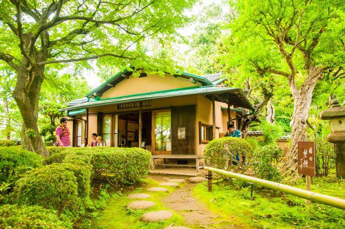渓谷をみた後は日本庭園でリラックス