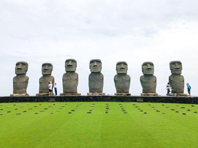 イースター島に行けなくても日本でモアイに会える!
