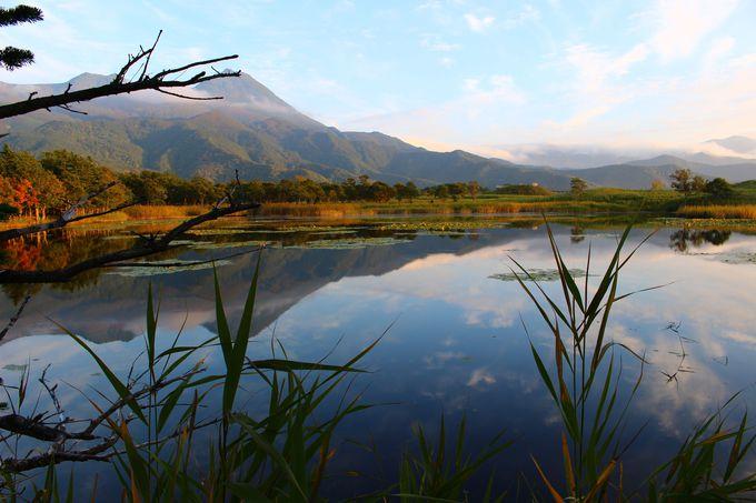 反射した水面が季節の美しさを映し出す「知床五湖」