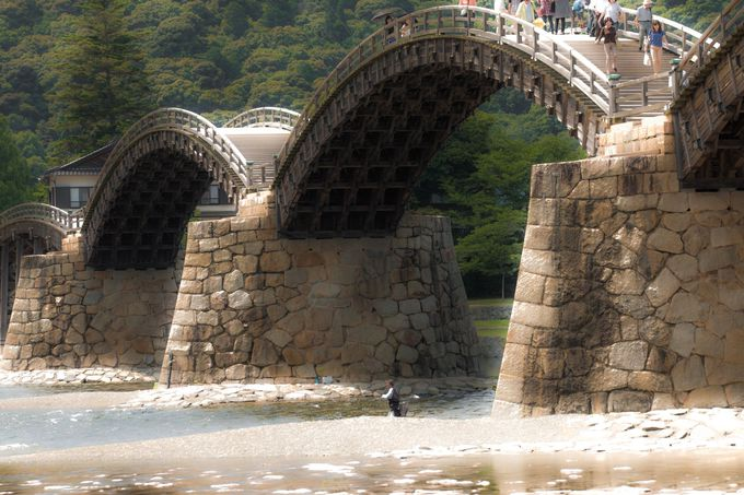 30cmの鮎が飛び跳ねる!! 錦川の川遊び