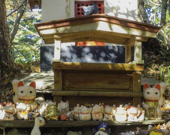 猫猫しい神社「猫神社」
