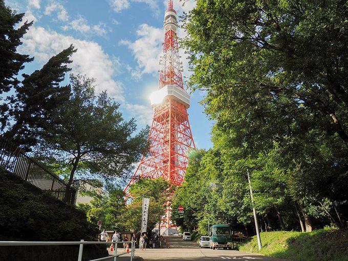 6.東京タワーを撮るベストフォトスポット