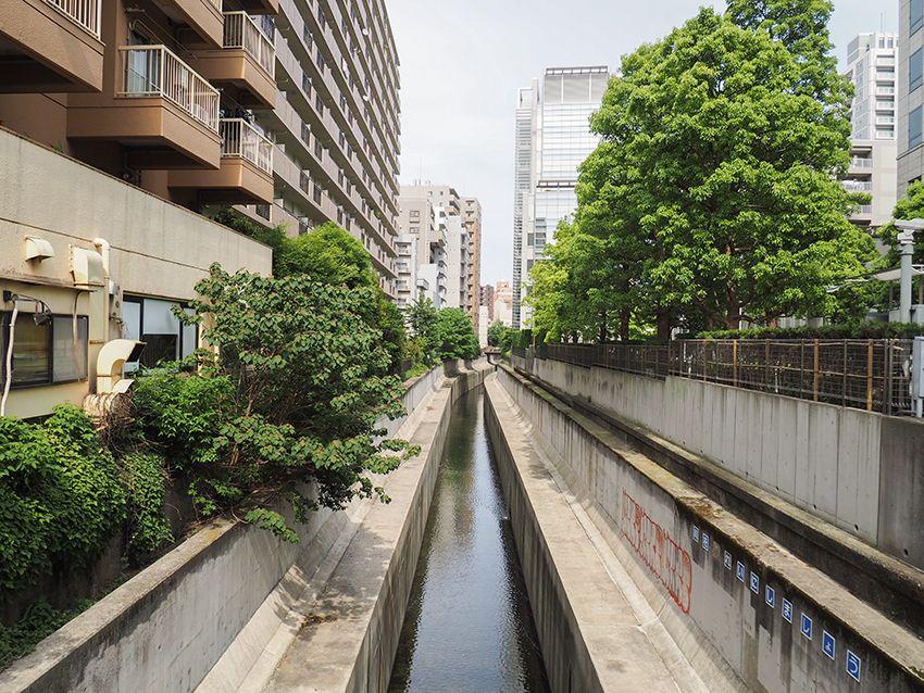 坂下の渋谷川