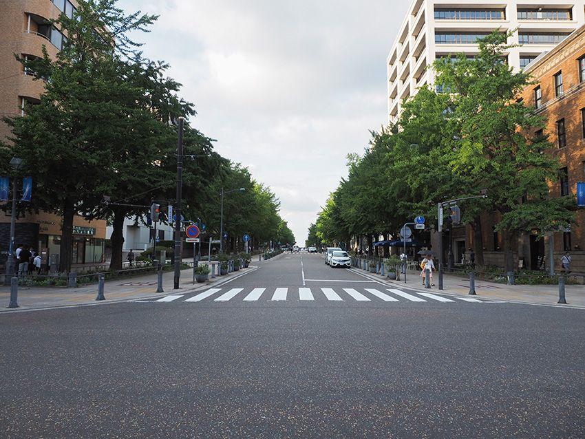 横浜「日本大通り」は日本初の西洋式街路?海へと続く並木道は通り自体に歴史あり