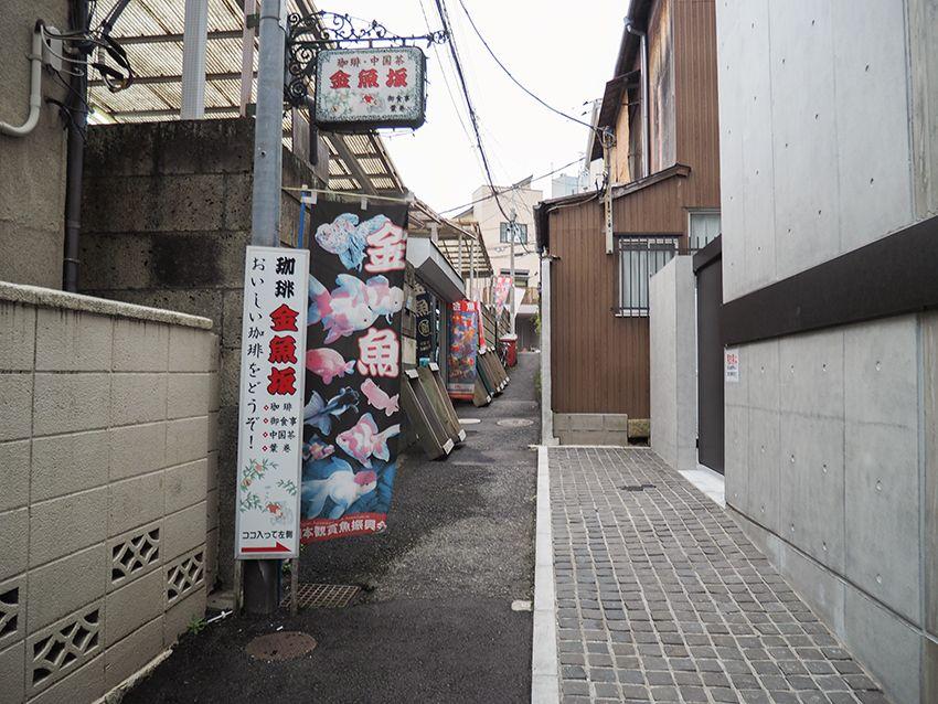 金魚坂の歴史は江戸時代から