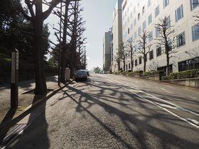 ドラマ「西郷どん」でも登場!四ツ谷駅すぐ、歴史的舞台ともなった東京・紀尾井坂めぐり