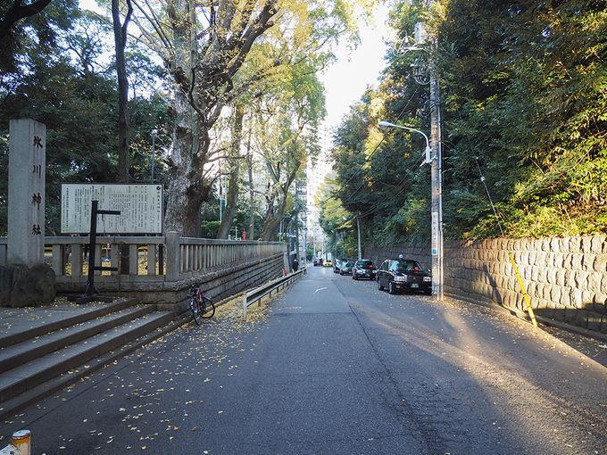 氷川神社と無名坂