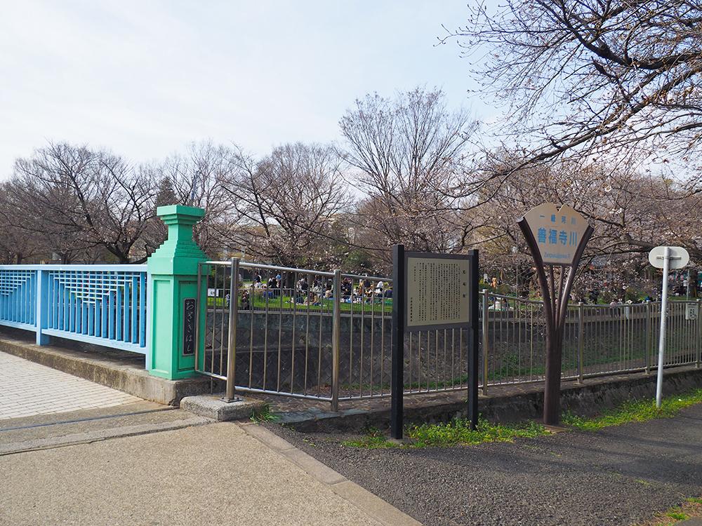 善福寺川に架かる尾崎橋