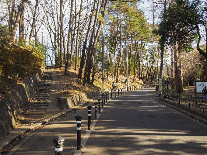 和田堀公園の北側に隣接する山王坂