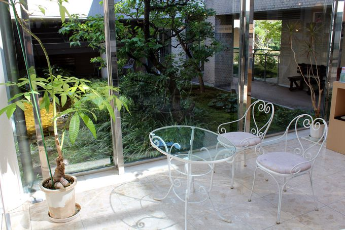 池のある緑の中庭を回遊しながら優雅な美術鑑賞を