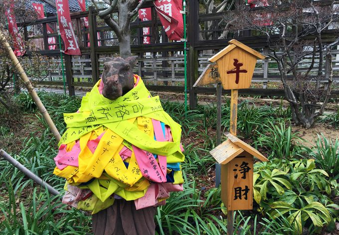 香林寺の幸せの道で「願う」