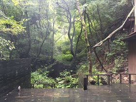 加賀・山中の森に佇む「東山ボヌール」絶品ビーフシチューは幸せの味
