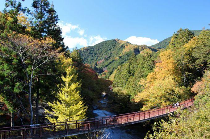 秋川渓谷「石舟橋」周辺の紅葉がお勧め