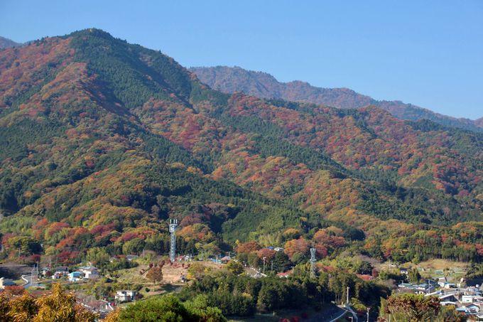 丘上から見渡す山々の紅葉