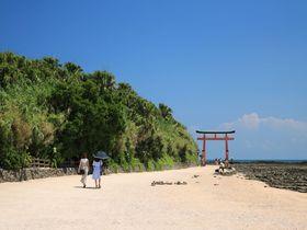 亜熱帯植物の茂る神話伝承の島!「青島」は南国宮崎の象徴