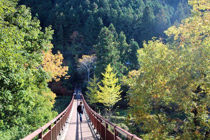 石舟橋上からの風景を堪能しよう
