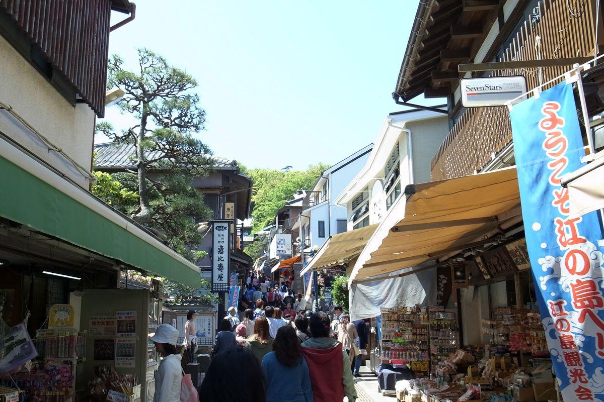 緑濃い島内に朱塗りの鳥居が映える、江島神社参道