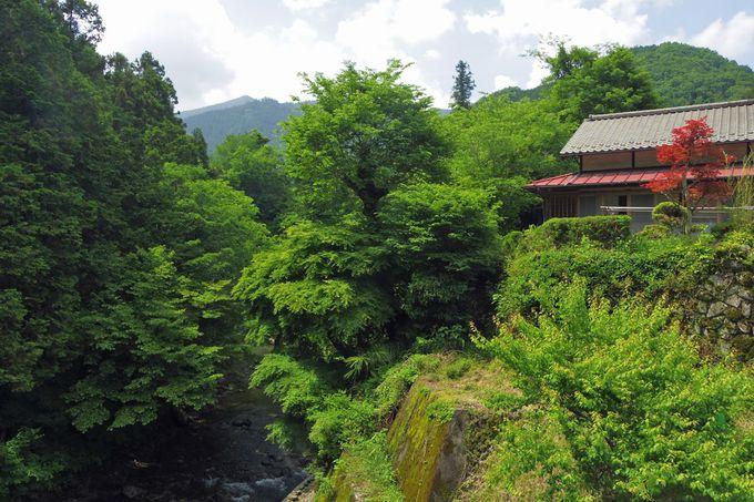 養沢川に架かる長岳橋からの眺めもお勧め