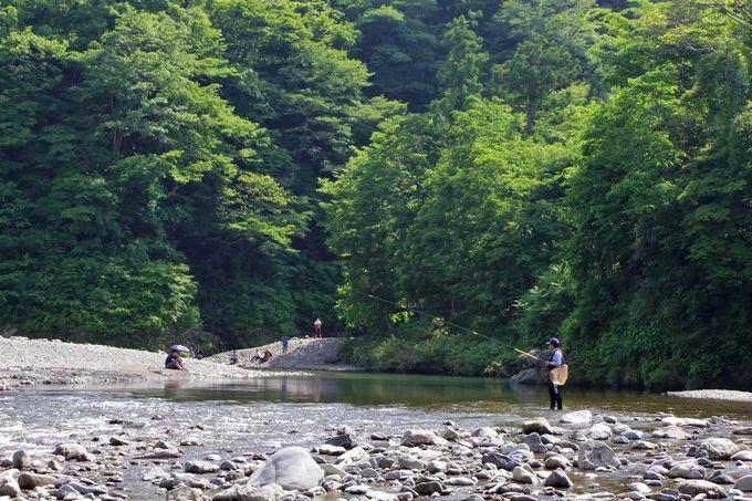 秋川の河原へ降りて、川遊びを楽しもう!