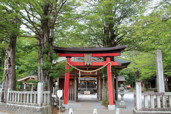 「鏡池」と「菖蒲池」、さらに忍草浅間神社へも足を延ばそう