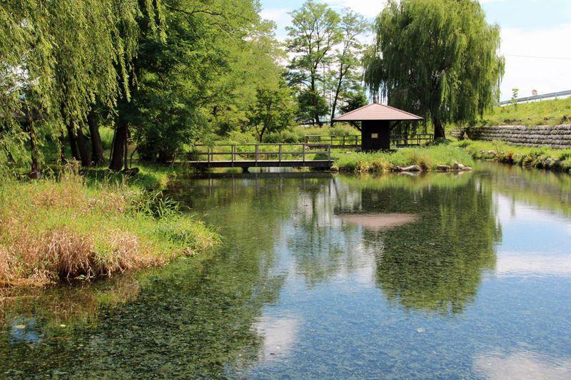 涼やかな水の絶景!「湧水の郷」長野県安曇野の水風景を巡る