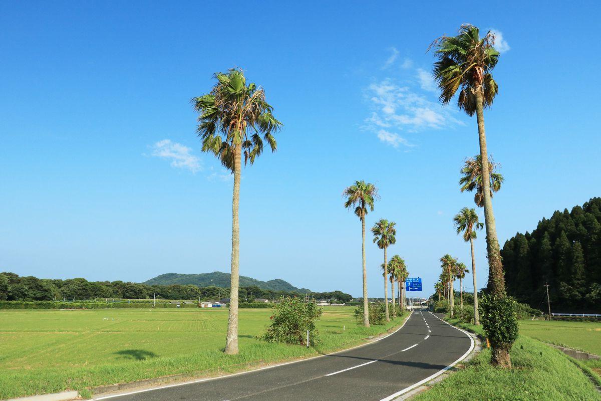 海岸を離れても美しい景観!市木の風景を楽しもう!