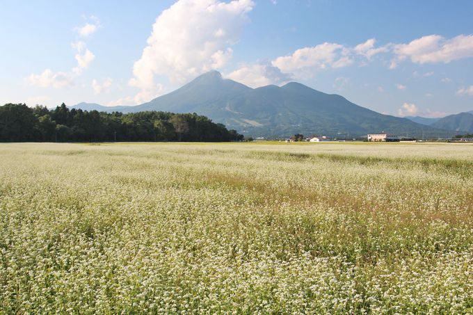 「天神浜」から見る磐梯山が絶景!