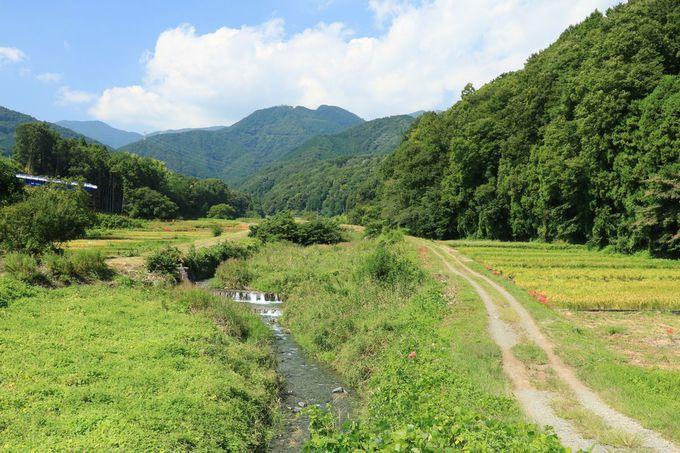 長閑な里山散歩が楽しめる四十八瀬川