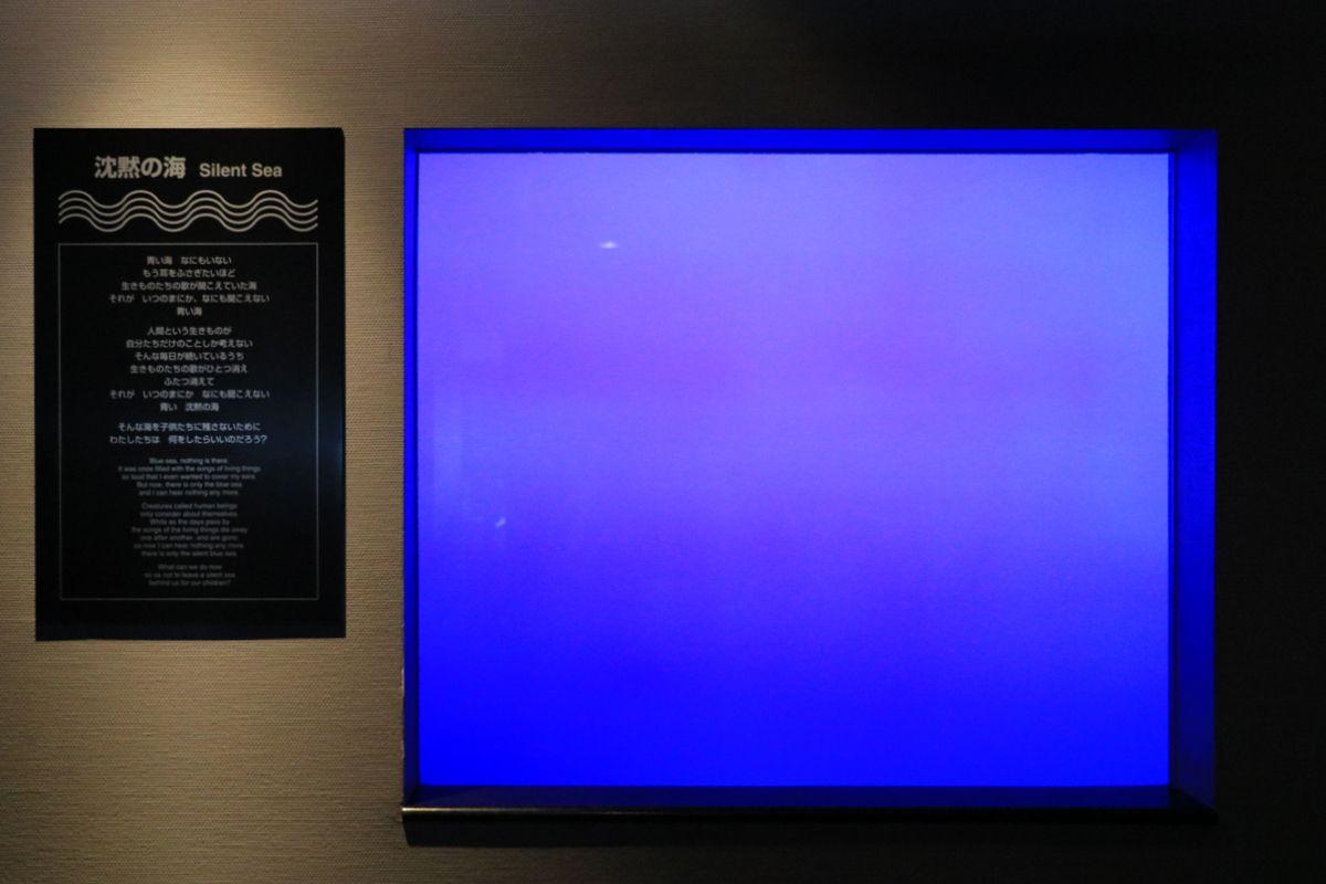 「展望ホール」からの桜島や「沈黙の海」も見ておこう