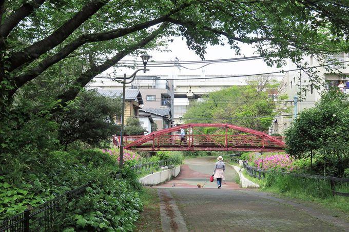 東京で最初に架けられた鉄橋、八幡橋