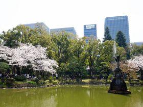 都心でお花見はいかが?桜咲く「日比谷公園」で楽しむ春散歩