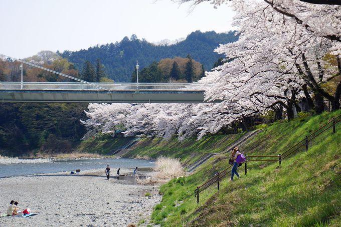 川遊びで賑わう釜の淵公園、春は桜の名所!