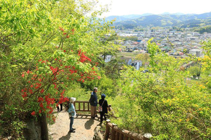 丘の上から眺める越生の風景が素晴らしい!