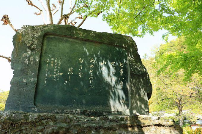 太田道灌と山吹の伝承に思いを馳せよう!