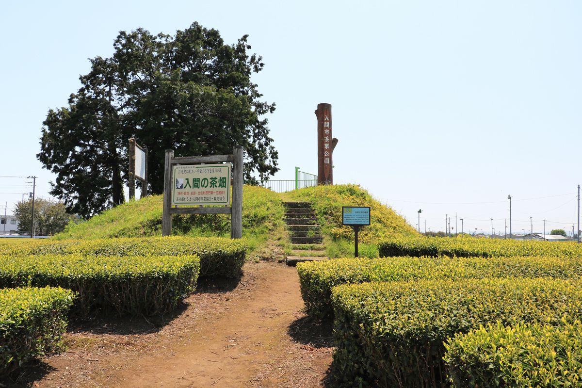 「入間茶業公園」を訪ねてみよう、展望デッキからの眺めが絶景!