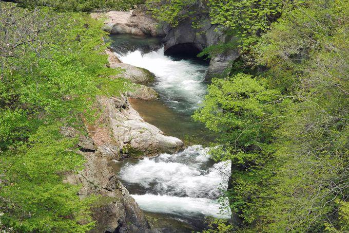 新緑の渓谷美!「吹割大橋」からの景観も見ておこう!