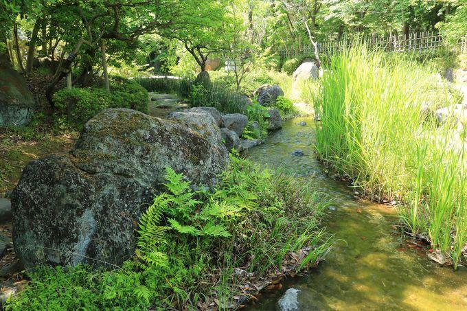「日本庭園」で日常を忘れるひとときを!
