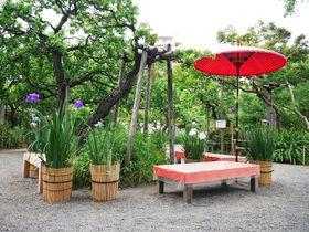 風趣に富んだ庭園で梅雨の花々を!「東京都立向島百花園」