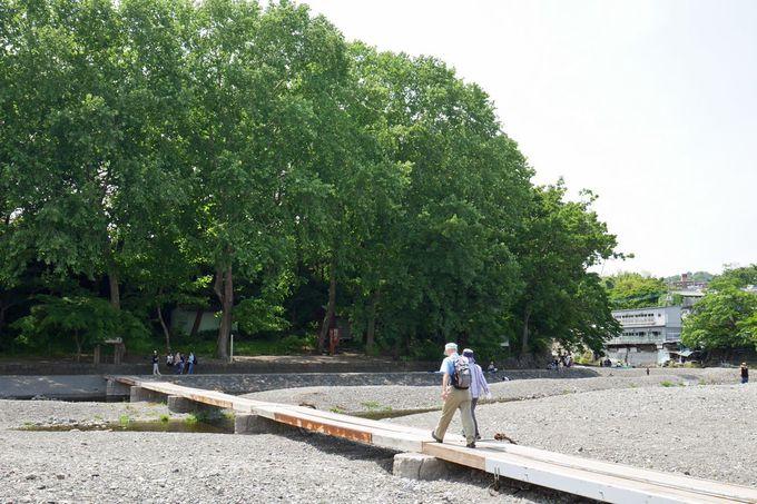 豊かな自然に包まれた「飯能河原」、駅から15分!