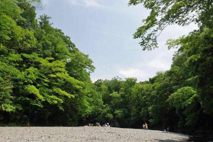 池袋から約1時間、「飯能河原」に出かけよう!