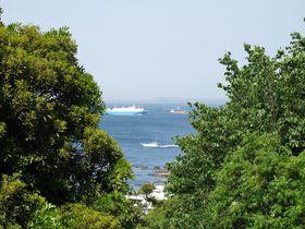 海岸から丘陵まで!横須賀「観音崎公園」で美しい眺望を満喫